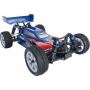 LRP S10 Blast BX - Der ultimative 1/10 Buggy f�r Jedermann!